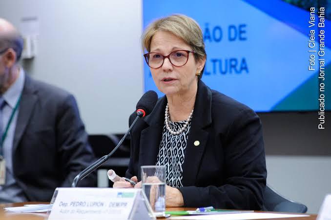 Tereza Cristina, Ministra da Agricultura do Governo Bolsonaro